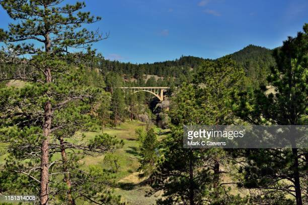 beaver creek bridge beyond some nearby trees - beaver creek colorado stock pictures, royalty-free photos & images
