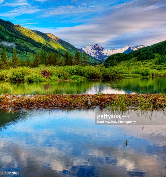 beaver dam hdr - beaver dam stock pictures, royalty-free photos & images