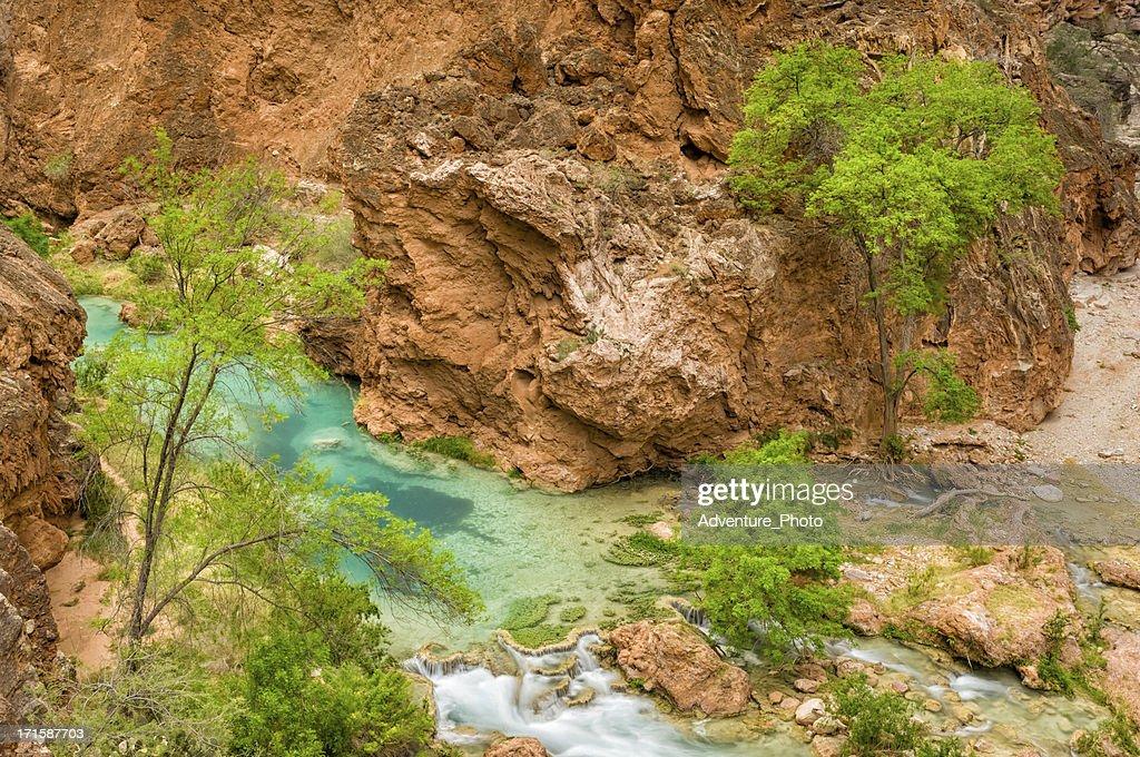 Beaver Falls Havasu Canyon : Stock Photo