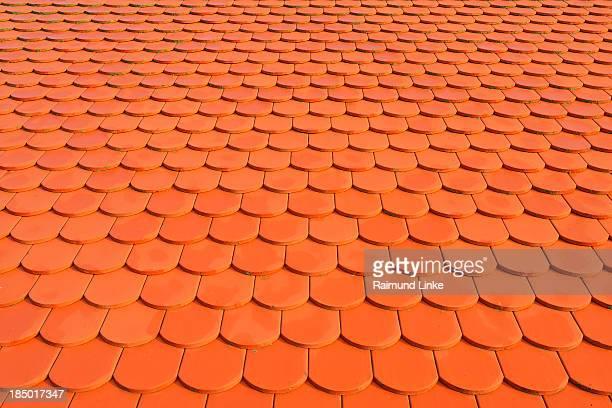 Beaver Tail Tile Roof
