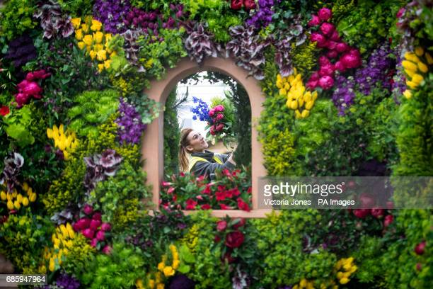 Becky Frost makes the final floral arrangements on the Marks and Spencer display during preparations for the RHS Chelsea Flower Show 2017 at the...