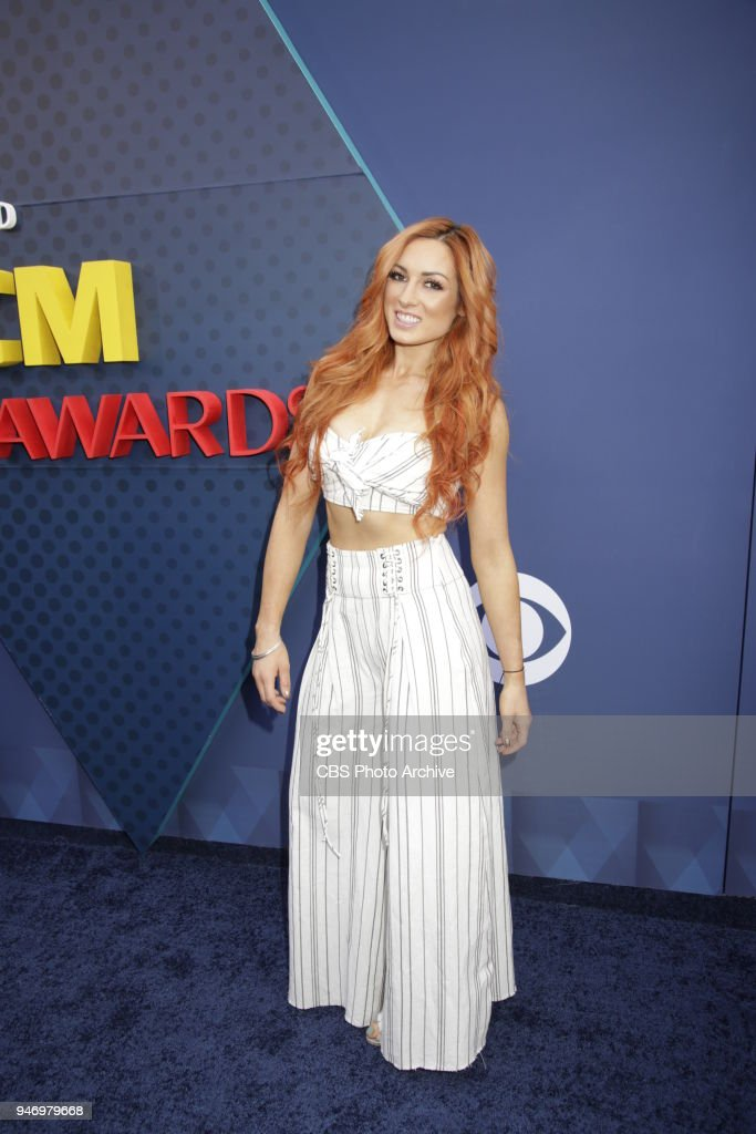 53rd Academy of Country Music Awards : Nachrichtenfoto