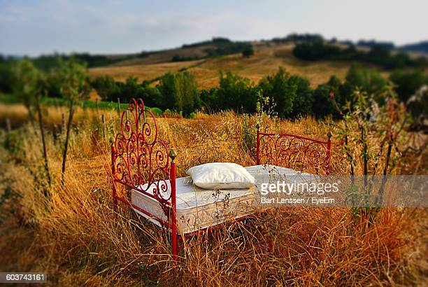 Bed On Grassy Field