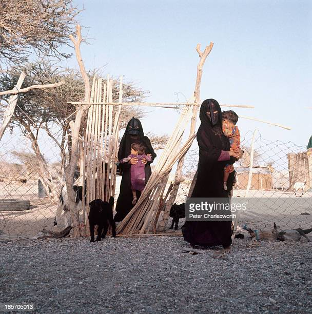 Bedhouin women wearing black burkas and traditional facemasks come through a gate in a fence in an enclosure where they keep their livestock mostly...