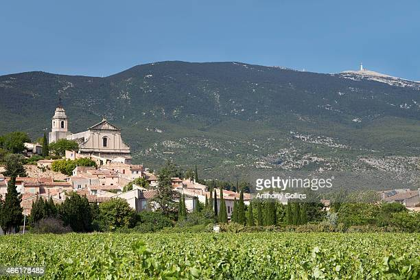 Bedoin between vineyards and mountains