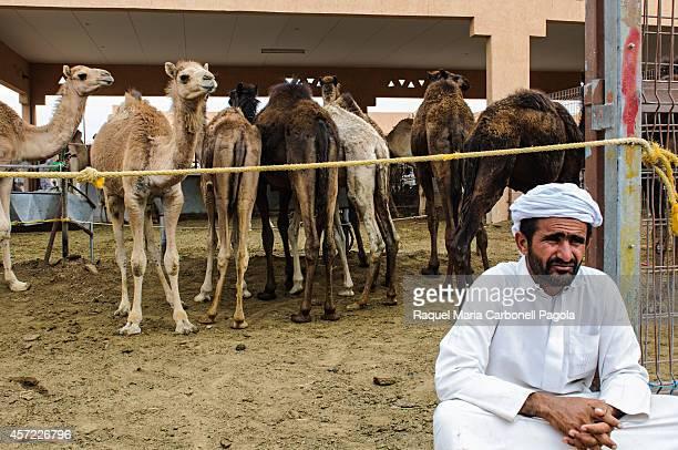 Bedouin in camel market