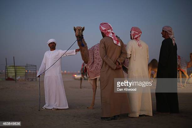 Bedouin man shows his camel to prospective buyers at a Camel Market on February 6 2015 in Sweihan City Abu Dhabi Emirate United Arab Emirates Abu...
