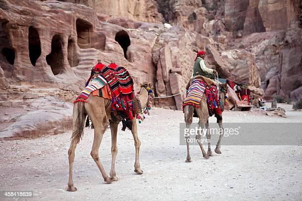 Bedouin on his camel
