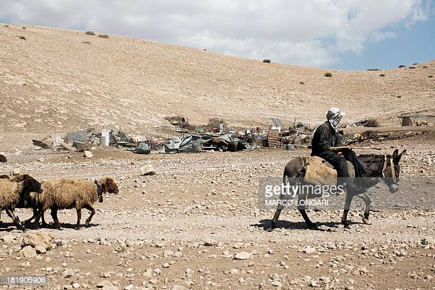 Bedouin Palestinian herder rides his donkey past the remains of the previous encampment in the West Bank Bedouin place of Makhul in the Jordan Valley...