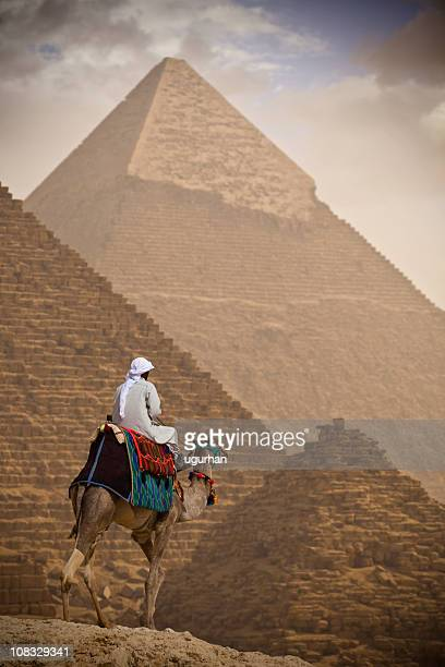 bedouin - cairo stock pictures, royalty-free photos & images