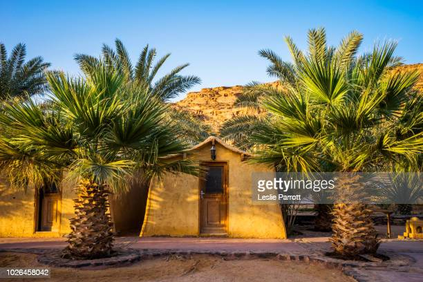 bedouin style mud hut at bait ali camp in wadi rum, aqaba, jordan - village stock pictures, royalty-free photos & images