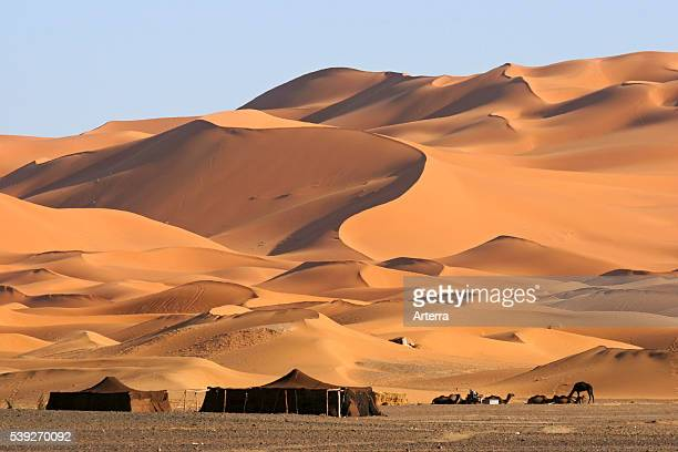 Bedouin tents and dromedary camels among red sand dunes Erg Chebbi Sahara desert Morocco North Africa