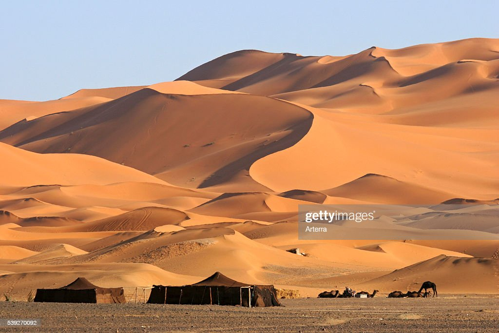 Bedouin tents and dromedary camels among red sand dunes Erg Chebbi Sahara desert Morocco North Africa & Bedouin Tent Stock Photos and Pictures | Getty Images