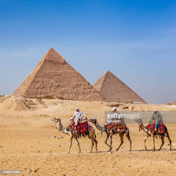 bedouins and pyramids - giza pyramids stock pictures, royalty-free photos & images