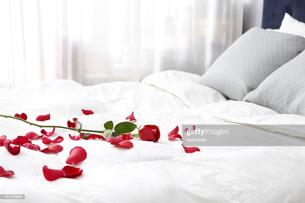 chambre avec lit simple et de p tales de rose sur le lit espace de copie photo getty images. Black Bedroom Furniture Sets. Home Design Ideas