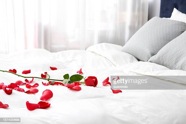 bedroom with single rose and petals on bed, copy space - petal stock pictures, royalty-free photos & images