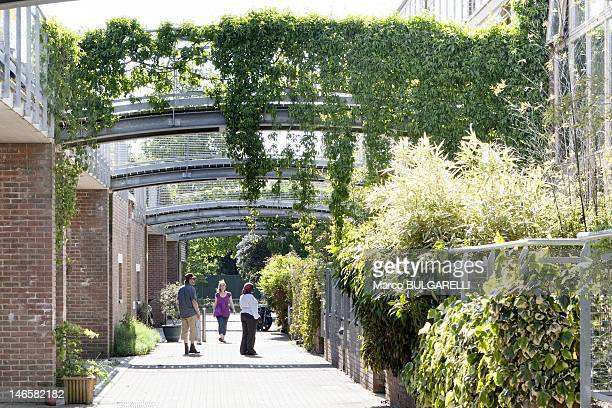 BedZED ecovillage Residents in the pedestrian street on May 26 2012 in London United Kingdom BedZED pedestrian priority streets and the provision of...