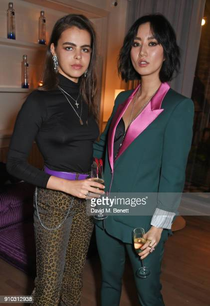 Bee Beardsworth and Betty Bachz attend the launch of Teresa Tarmey's new 'at home facial system' at Mortimer House sponsored by CIROC on January 25...