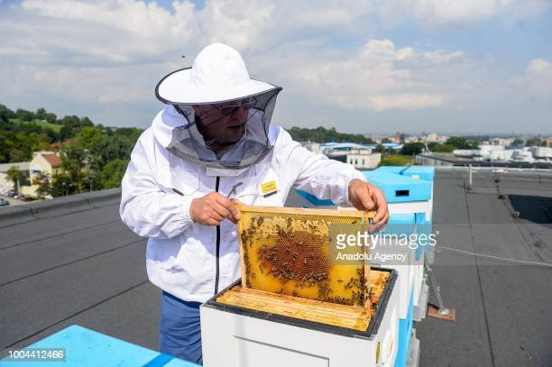 A bee keeper inspects a beehive on the top of a city council building in Krakow Poland on the July 23 2018 A beehive project called 'Pasieka Krakow'...