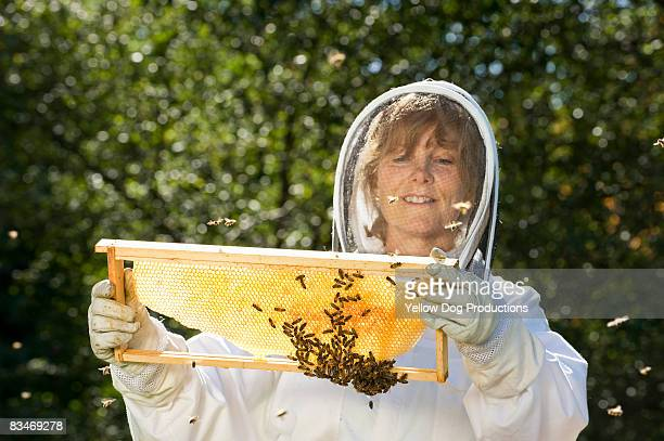 Bee Keeper Working with Bee Hives