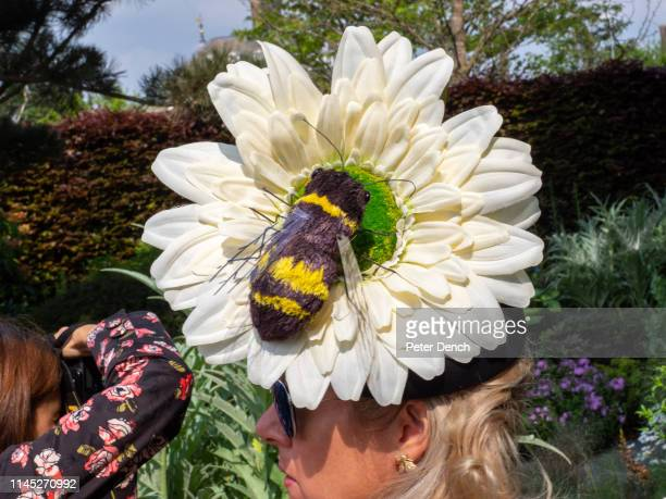 A bee theme hat worn by a visitor on press day at Chelsea Flower Show on May 20 2019 in London England The RHS Chelsea Flower Show takes place...
