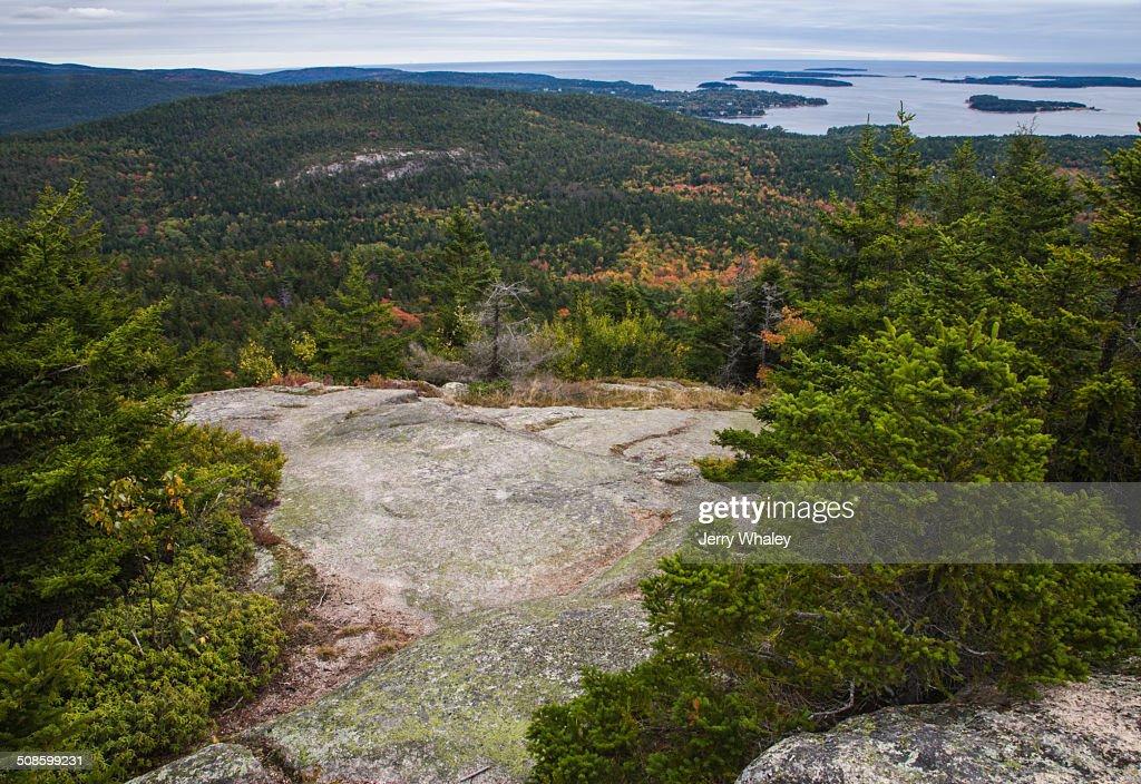 Beech Mtn Trail, Acadia : Stock-Foto