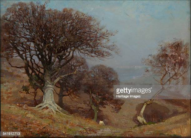 Beeches on the Quantocks, 1825-1924. Artist: Benjamin Haughton