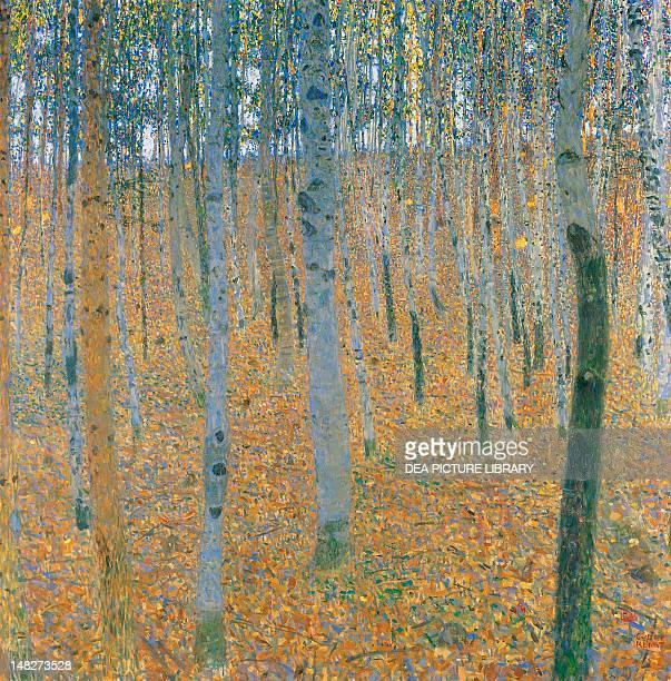 Beechwood forest by Gustav Klimt 100x100 cm Dresda Gemäldegalerie Neue Meister