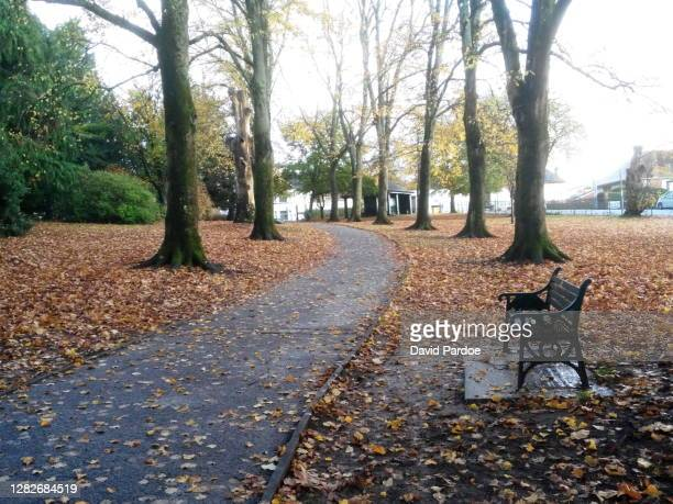 beechwood park - newport wales stock pictures, royalty-free photos & images