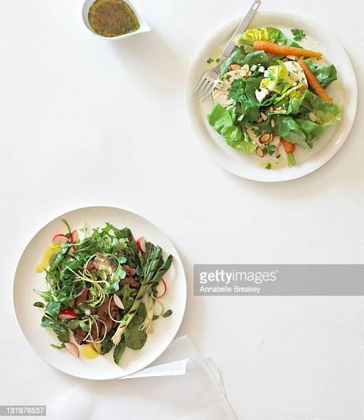 Beef and Chicken Dinner Salads