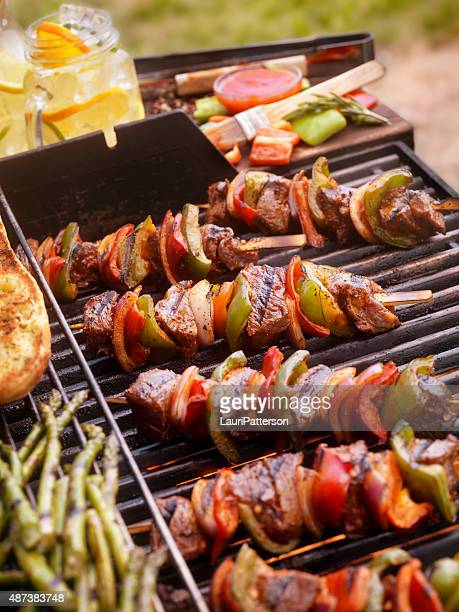Beef and Vegetable Kabobs on the BBQ
