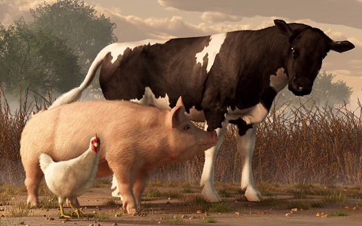 Beef, Pork, and Poultry 1135988701