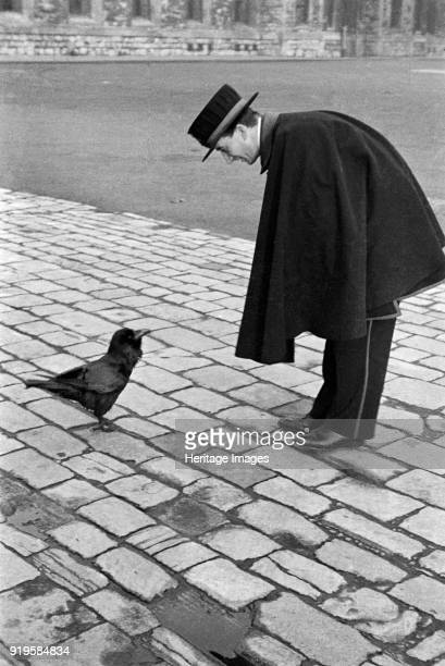 Beefeater bending down to address a raven Tower of London Tower Hill London late 1930s