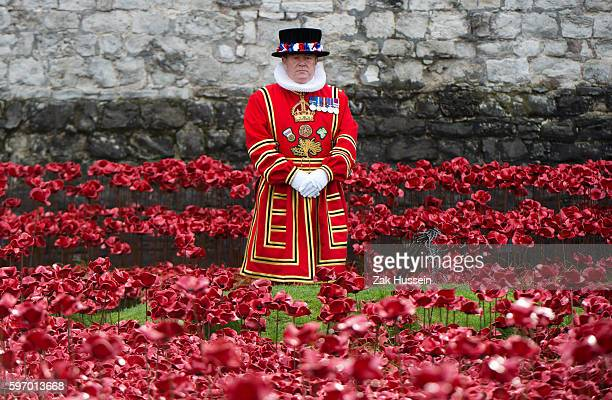 Beefeater during the visit of Queen Elizabeth II and Prince Philip, Duke of Edinburgh to the Tower of London to view the Blood Swept Lands and Seas...
