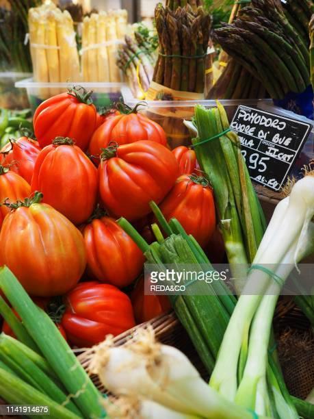 Beefsteak tomato organic farming Milan Lombardy Italy Europe