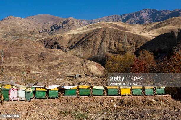 Beehive in the Alamut Mountains, Iran