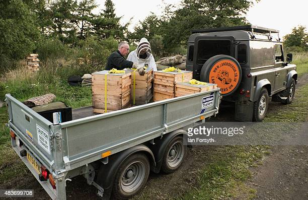 Beekeeper Dave Whyman is helped by his son Leigh to move bee hives to a new location to ensure a fresh supply of pollen and nectar for his bees on...