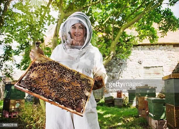 beekeeper holding bees and honeycomb - 養蜂 ストックフォトと画像
