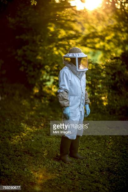 Beekeeper wearing a veil and protective clothing in a forest.