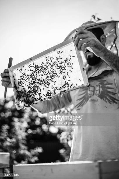 beekeeper working against sky - colony stock pictures, royalty-free photos & images