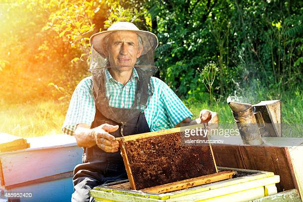 Beekeeper working
