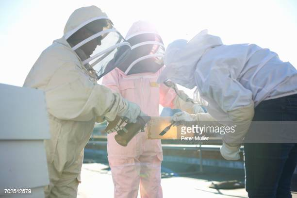 Beekeepers discussing honeycomb on city rooftop