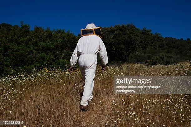 beekeeping - 養蜂 ストックフォトと画像