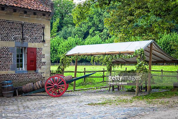 beer and hops - ardennes department france stock photos and pictures