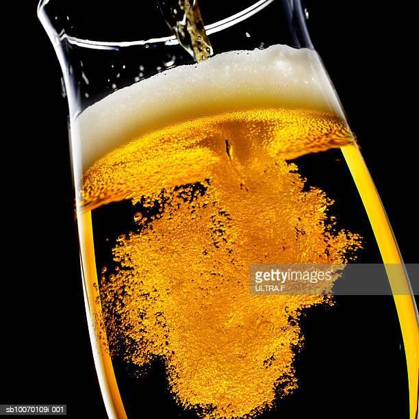 Beer been poured into glass, studio shot