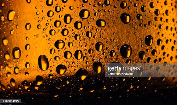 beer bottle close up - alcohol stock pictures, royalty-free photos & images
