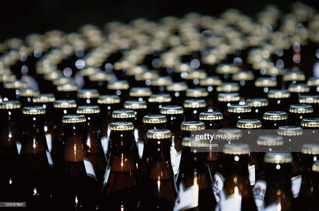 Beer Bottles In Factory : Stockfoto