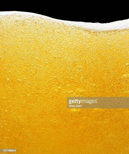 beer bubbles in a glass - beer stock pictures, royalty-free photos & images