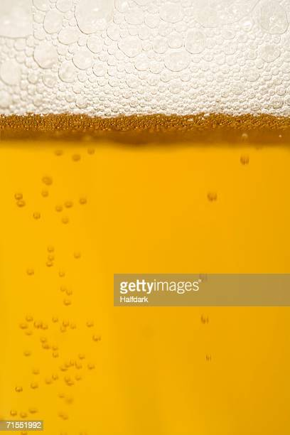 Beer, close-up