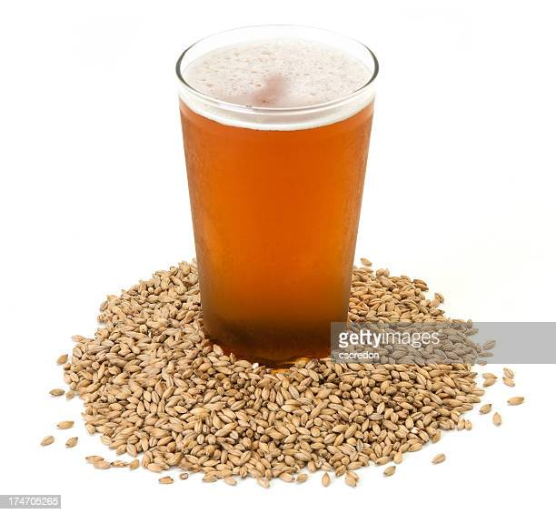 beer in barley isolated on white